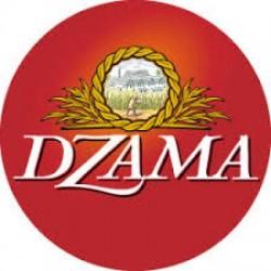 Dzama groupe VIDZAR